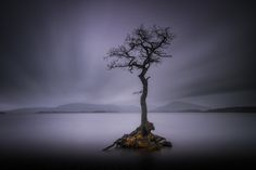 https://flic.kr/p/PAwEh4 | Scottish Weather | Spent a few days last week up in the Highlands of Scotland... The weather and light were delightfully awful. However I did grab this shot of the lone tree on Loch Lomond.