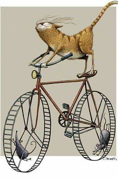 Cartoon illustration by Dario Castillejos. Crazy Cat Lady, Crazy Cats, Bicycle Art, Bicycle Design, Cat Drawing, Children's Book Illustration, Cat Illustrations, Cat Art, Cats And Kittens