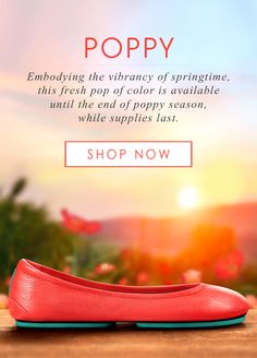 Poppy Tieks are back in bloom! This fresh pop of color is only available until the end of poppy season. Tieks Ballet Flats, Tieks By Gavrieli, Walk This Way, Homemade Beauty Products, Poppies, Color Pop, Cool Things To Buy, Cute Outfits, Stylish Outfits
