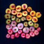 """Sarah Phillips on Instagram: """"Fresh from the market! #food #colorsoffood #garlic #radishes #heirloomtomatoes #colorsoftherainbow #gatheringslikethese #foodcollage #vegetables #foodstyling #foodphotography #unsqgreenmarket #nyceats #microgreens"""""""