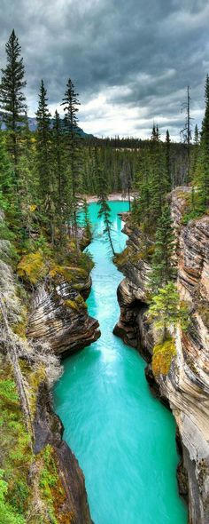 Athabasca Falls canyon in Jasper National Park, Alberta, Canada