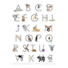 New to TinyToesDesign on Etsy: Animal Alphabet Art - Alphabet Wall Art - Child's Room - ABC Art - Animal Alphabet Print - Alphabet Poster - 11 x 14 USD) Animal Alphabet, Alphabet Nursery, Alphabet Wall Art, Animal Letters, Nursery Art, Alphabet Letters, Letter Art, Nursery Decor, Playroom Art