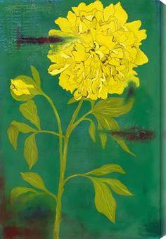Blooming Lemon - Laura Gunn