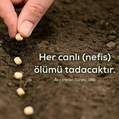 Âl-i İmrân/185 Verses, Religion, Modern Art, Quotes, Scriptures, Contemporary Art, Lyrics, Poems, Contemporary Artwork