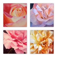 """""""HEART OF A ROSE set of 4"""" by JAN LAWNIKANIS. Paintings for Sale. Bluethumb - Online Art Gallery New Artists, Great Artists, Buy Art Online, Paintings For Sale, Watercolour Painting, Cool Artwork, Online Art Gallery, Lovers Art, Custom Framing"""