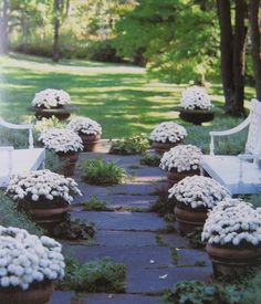 Potted Mums & Garden Benches & Stone Walkway - Carolyne Roehm