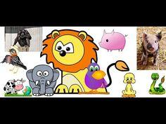 Los sonidos de los animales para niños de 1 a 5 años Animal sounds for kids 1-5 years old