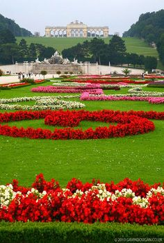 Gardens of Schonbrunn Palace in Vienna, Austria by gdphotography. Most Beautiful Gardens, Beautiful Flowers Garden, Beautiful Roses, Amazing Gardens, Beautiful Landscape Wallpaper, Beautiful Landscapes, Beautiful Nature Pictures, Amazing Nature, Gardens Of The World