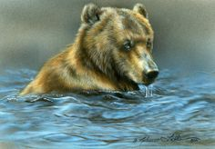 """Cooling Off Grizzly"" by Rebecca Latham"