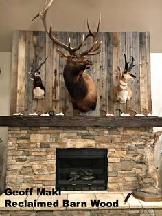 Geoff Maki is a finalist in our May Photo of the Month Contest! His game/trophy room features a statement fireplace made from our reclaimed barn wood. To vote for him like, comment and repin! #contest #barnwood #reclaimedbarnwood #reclaimed #reclaimedlumber #rustic #lumber #taxidermy #trophyroom #gameroom