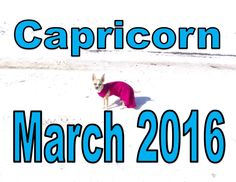 Capricorn Astrology & Tarot Divination reading for March 2016