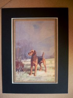 AIREDALE terrier dog Vintage mounted 1931 Ward Binks dog plate print Unique Christmas Thanksgiving birthday present illustration gift by Hollysprints on Etsy