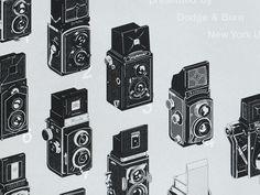 Evolution of the Twin Lens Reflex | Illustration, Print | Fivethousand Fingers