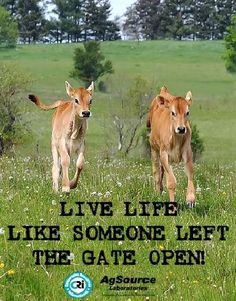 So True! Enjoy the Agriculture in your life everyday. From AgSource Laboratories