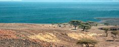 Lake Turkana stands in the middle of climatic extremes yet the lake continues to flourish, find out why the lake is still an amazing safari destination in Northern Kenya