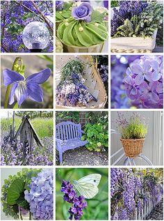 flickr favs :: lavender & green | BailiwickDesigns | Jill Burgess | Flickr