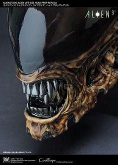 CoolProps Alien Warrior and Dog Alien Bust Replicas – RPF Pulse