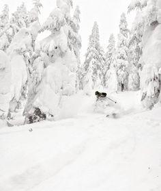 Gorgeous winter white shot from #evoCrew, Asa (@aredfield)!