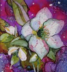 Christmas Rose. Alcohol Ink on Yupo - Helen Cook                                                                                                                                                                                 More