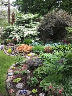 My neighbor's garden...