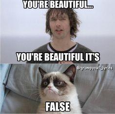 Grumpy Cat sings with James Blunt