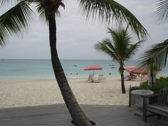 View of the Ocean from Ocean Club Resort in the Turks and Caicos. Love the Palm tree growing through the deck