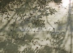 Jalousie 2 – VIMESO picture services