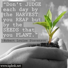 'Don't judge each day by the harvest you reap but by the seeds that you plant.' -Robert Louise Stevenson http://iqdesk.net/buy/