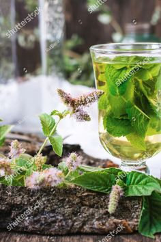 Мятный чай #мятныйчай#мята#освежающий#tea#mint#fresh Food And Drink, Mint, Coffee, Drinks, Image, Peppermint, Kaffee, Beverages, Cup Of Coffee