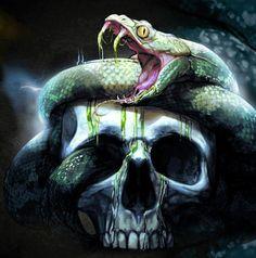 Snake n skull