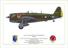"""Preciso de fotos/profiles de P-47D FAB """"sem barbatana"""" e de F-5E FAB Agressor"""