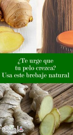 What is the best treatment for frizzy hair? Best treatment for frizz hair - Style My Hairs Frizzy Wavy Hair, Hair Mask For Damaged Hair, Hair Frizz, Beauty Secrets, Beauty Hacks, Beauty Tips, Cabello Hair, Hair Repair, Grow Hair
