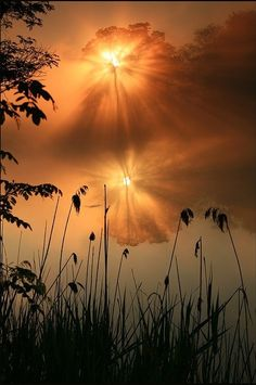 Amazing Snaps: The Picturesque View of Sunset !!!!   See more
