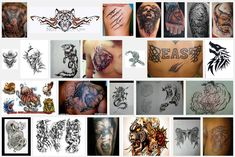 Beast Tattoo Meanings | iTattooDesigns.com