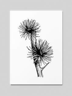 Woodcut drawings of various plants Drawing Sketches, Drawings, Illustrations, Embroidery, Plants, Design, Needlepoint, Sketches, Illustration