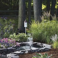 How To Create The Ultimate Butterfly Garden