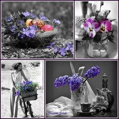 Color splash purple