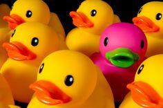 love rubber duckies