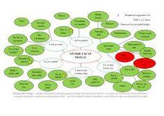Výsledek obrázku pro zdravotní cvicení se stuhou Montessori, Projects To Try, Education, September, Image, Maps, Literatura, Teaching, Onderwijs
