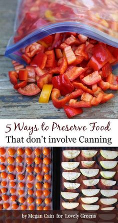 5 Easy ways to preserve fresh produce without canning Five easy and quick ways to preserve fresh produce without canning including dehydration, freezing, refrigeration, and fermentation. Canning Food Preservation, Preserving Food, Freezing Vegetables, Veggies, Canned Food Storage, Canning Jar Storage, Produce Storage, Good Food, Yummy Food