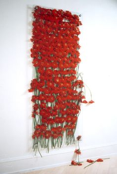celiabaneiela:    Anya Gallaccio- Preserve Beauty, 1991-2003