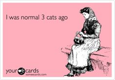 I was normal four cats ago. Unless I can have a huge house with a litter cleaning service, I wouldn't go above four.