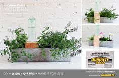 HomeMade Modern DIY Self Watering Concrete Planter Postcard