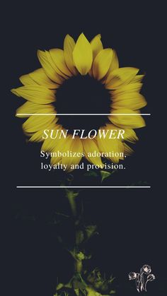 Flower Symbol, Symbols, Flowers, Movie Posters, Movies, Art, Art Background, Films, Film Poster