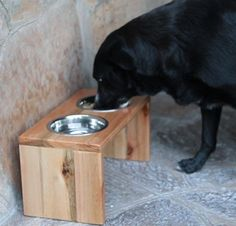 with custom dog wood feeders stand pet stainless low manufacturer bowlfeeder feeder steel com category bowl elevated wholesale china price products lepetco