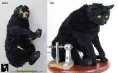 An original animatronic cat puppet from Dr. Who - in poor condition on arrival and shown to the right after Mike Thomas restored the piece!