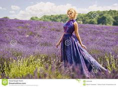lavender field portraits - Google Search