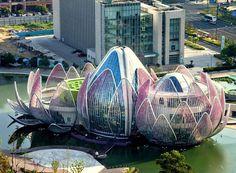 Lotus building, Wujin, China