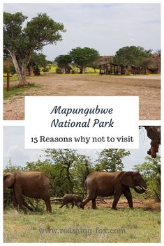 15 Reasons why not to visit Mapungubwe — Roaming Fox Time In The World, Travel Around The World, Around The Worlds, Africa Travel, World Heritage Sites, Where To Go, South Africa, Travel Inspiration, Travel Photography