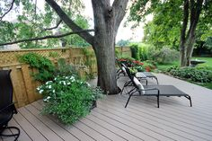A shady area to rest and read a book under the tree. Deck Around Trees, Tree Deck, Modern Country, Country Farmhouse, Decking Area, Garden Inspiration, Garden Ideas, Garden Makeover, Outdoor Retreat